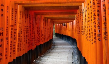 A wonderful treck in kyoto, a peaceful place when you manage to avoid the crowd