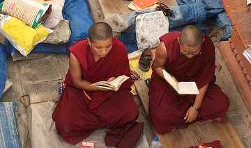 La sagesse bouddhiste